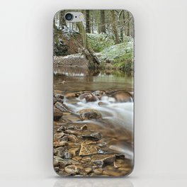 Winter stream iPhone Skin