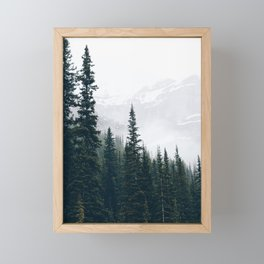 Evergreens in the fog Framed Mini Art Print