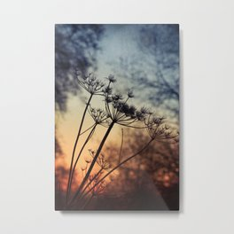 xtra & ordinary Metal Print