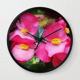 Closeup Pink Flower, Yellow Core Wall Clock