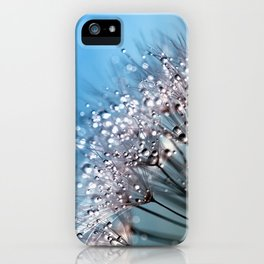 dandelion pissenlit 4 iPhone Case