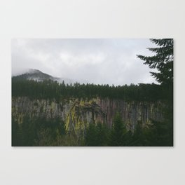 Landscape, Gifford-Pinchot national forest Washington Canvas Print