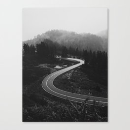 Mountain Road Curves Canvas Print