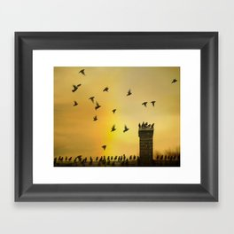 Rooftop Birds Framed Art Print