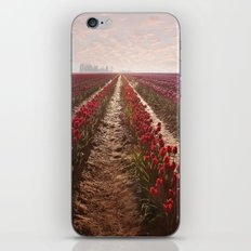 tulips forever iPhone & iPod Skin