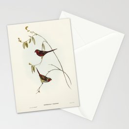Crimson Finch (Estrelda Phaeton) illustrated by Elizabeth Gould (1804–1841) for John Gould's (1804-1 Stationery Cards