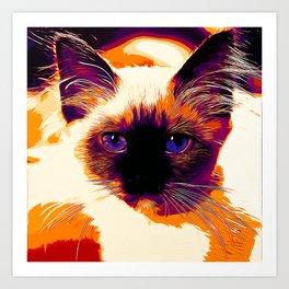 holy birma cat blue eyes vector art late sunset Art Print