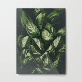 Leaves Paradise Metal Print