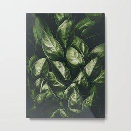 Leaves Paradise Metal Print