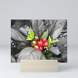 Holly Mini Art Print