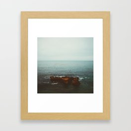 Bird Rock Framed Art Print