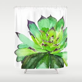 green succulent 2 Shower Curtain