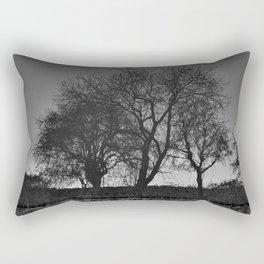 Reflection #3 - Chester canals Rectangular Pillow