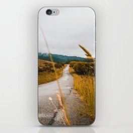The Roadside Path (Color) iPhone Skin