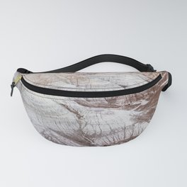 Panoramic landscape of Petrified Forest National Park Fanny Pack