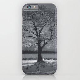 Coated in Winter iPhone Case