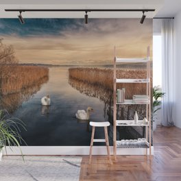 Swan Lake Landscape Wall Mural
