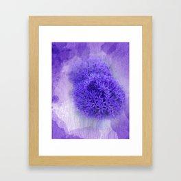 dreaming lilac -7- Framed Art Print