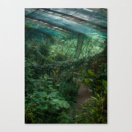 There Will Come Soft Rains - Costa Rica Butterfly Conservatory Canvas Print