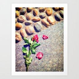 Trampled down rose Art Print
