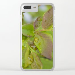 Blueberry Dew Clear iPhone Case