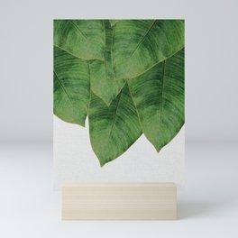Banana Leaf III Mini Art Print