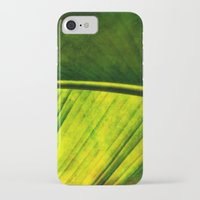 banana leaf iPhone & iPod Cases featuring Banana leaf by helsch photography