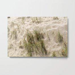 Sandy Beach With Grass Weeds Metal Print