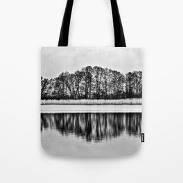 White Symphony of Winter Lake Tote Bag