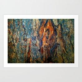 Bark Texture 17 Art Print