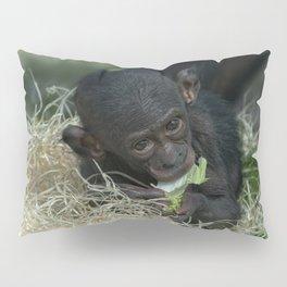 Cheeky Bonobo Baby Pillow Sham