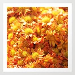 Fall Flowers - Orange Mums Art Print