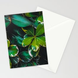 closeup green leaves texture background Stationery Cards