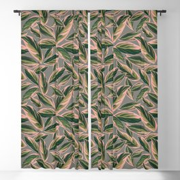 Calathea Leaves Pattern- Pink Green Gray Blackout Curtain
