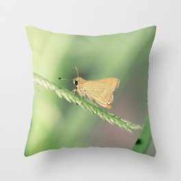 Wedge Grass-skipper Throw Pillow