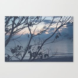 The sea collection Canvas Print