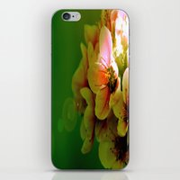 flora iPhone & iPod Skins featuring Flora by Jake Stanton