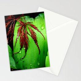 Maples and Lilies. Stationery Cards
