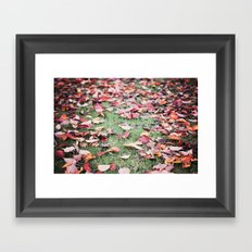 Autumn in the Botanics. Framed Art Print
