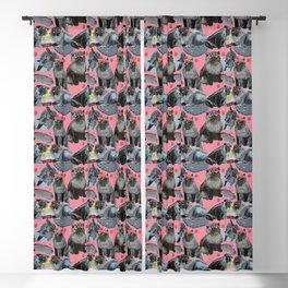 Freddy- Cat pattern in Pink Rose Blackout Curtain