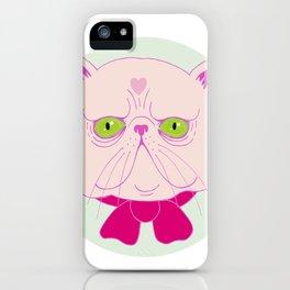 Persian Cat iPhone Case