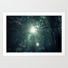 Canopy Worship Art Print