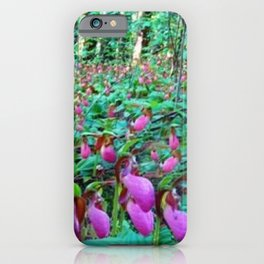 Wild Orchid Lady Slipper Forest - Scituate, Rhode Island iPhone Case