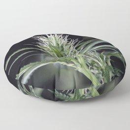 Cannabis Marijuana Flower Early Stage Floor Pillow