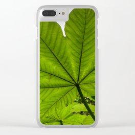 The great Yagrumo tree leaf -  El Yunque rainforest PR Clear iPhone Case
