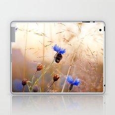 Sleeping Bumblebee Laptop & iPad Skin