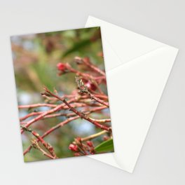 Red Branches Stationery Cards