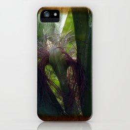 maize -2- iPhone Case