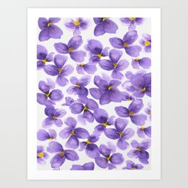 Violets are blue Art Print