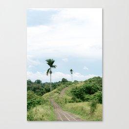 View on the Campuhan Ridge Walk in Ubud, Bali, Indonesia   Travel photography art print photo Canvas Print